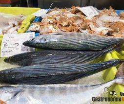 Pesca sostenible, directrices