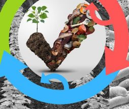 Reutilizar el desperdicio de alimentos