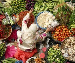 Gases de efecto invernadero en la producción de alimentos
