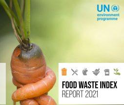 PNUMA informe 2021