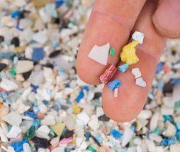 Microplásticos y salud humana