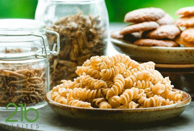Gusano de la harina, nuevo alimento