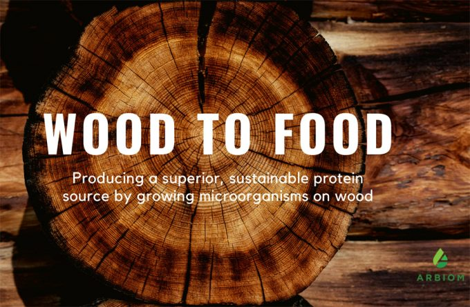 Proteínas alimentarias obtenidas de la madera