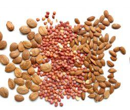 Semillas de frutas de hueso para consumir