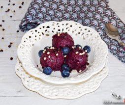 Sorbete de arándanos y yogur, receta fácil