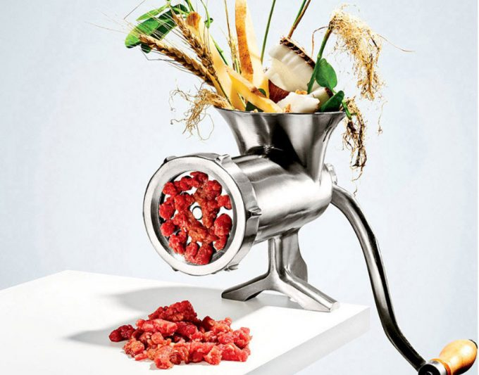 Alimento alternativos a la carne animal